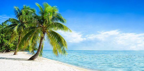 Reisecheckliste für den Strandurlaub: für Wasserratten, Bademeister & Wellenreiter